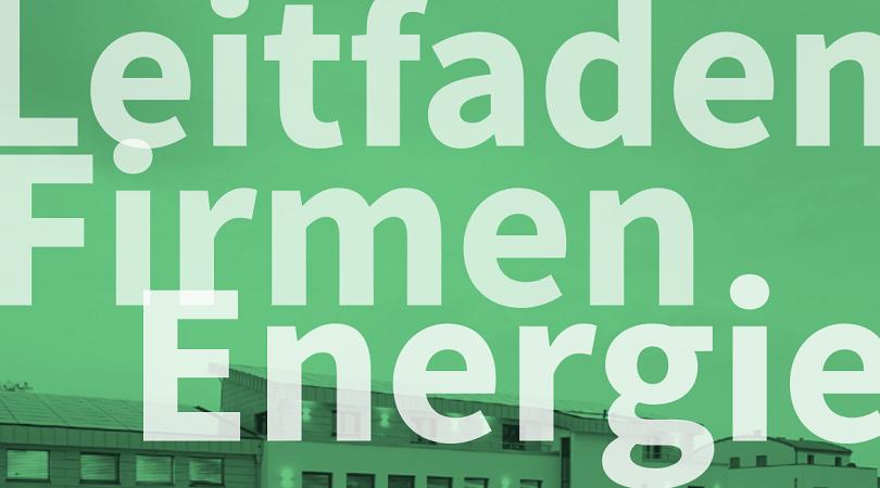 """Leitfaden Firmenenergie"""